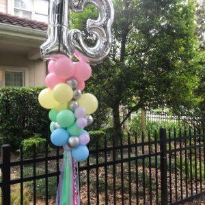Birthday Party Poles
